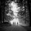 Photo of Camp Adams trees