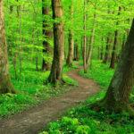 Spirituality Retreat March 16-18