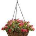 image of hanging flower basket